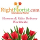 Right Florist Pvt Ltd