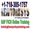 SAP-FICO-Online-Training-at-FICOTraining-com