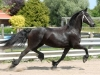 Friesian-Horse-Black-Mare-To-Adopt-wbetter3