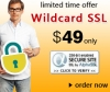 Get-cost-effective-solution-with-Wildcard-SSL-Certificate-from-SSL2BUY-com