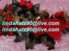 Nice Charming Male and Femal Teacup Yorkie Puppies